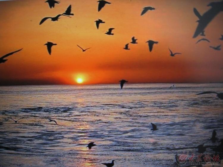 日照海边渔家乐 金贝壳渔家