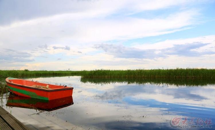 齐齐哈尔扎龙自然保护区风景