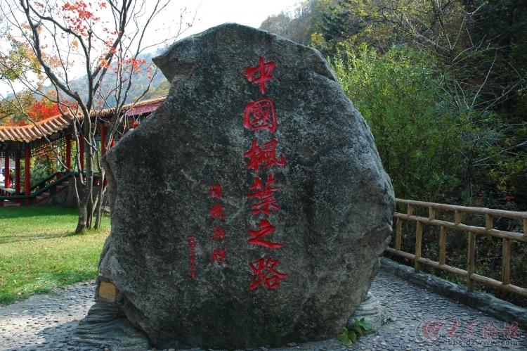 2013年10月1辽宁本溪市杨胡沟赏枫叶,自驾游.