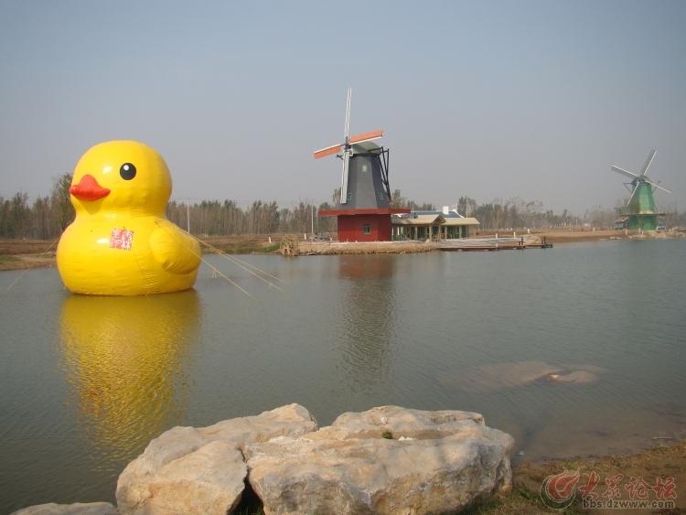 【美丽滨州】秦皇河美景——今天上午摄于荷兰风车村附近