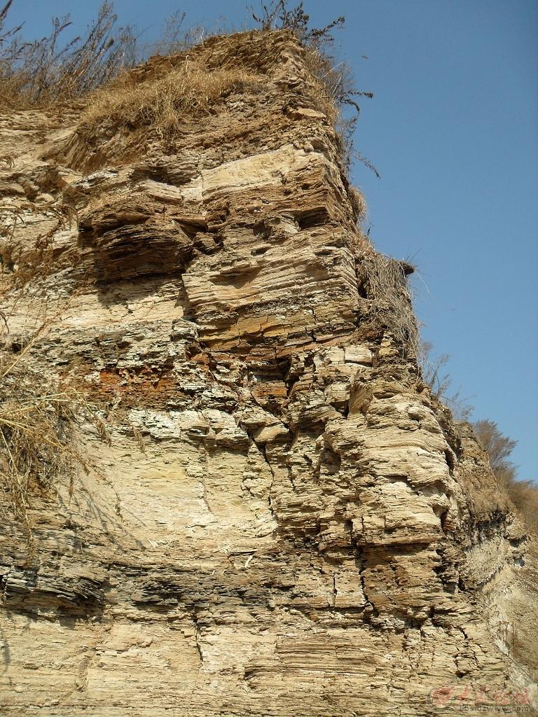 山东山旺国家地质公园