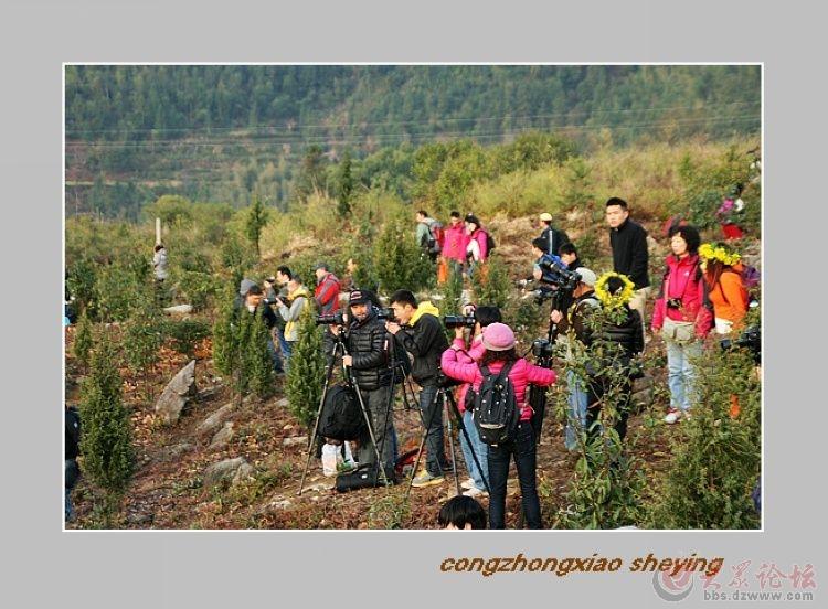 中国美丽乡村婺源一一摄影人集结地 三