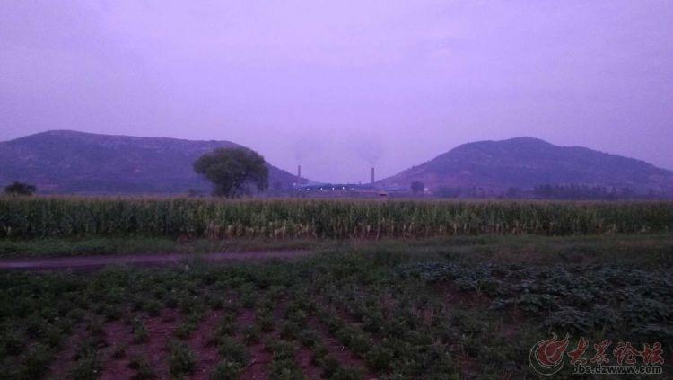 阴平白山采矿发现汉代墓群