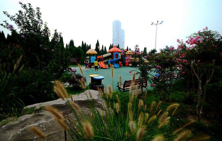 植物园里的儿童游乐园