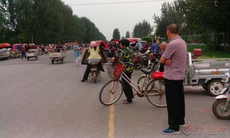 随手拍…小学小学生接送农村范围路v小学龙江图片