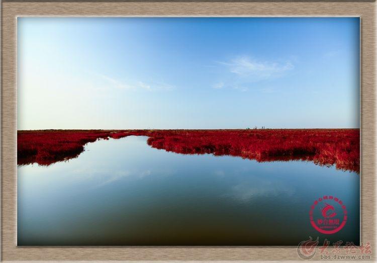 妙合无垠东营风光摄影:入海口红地毯.jpg