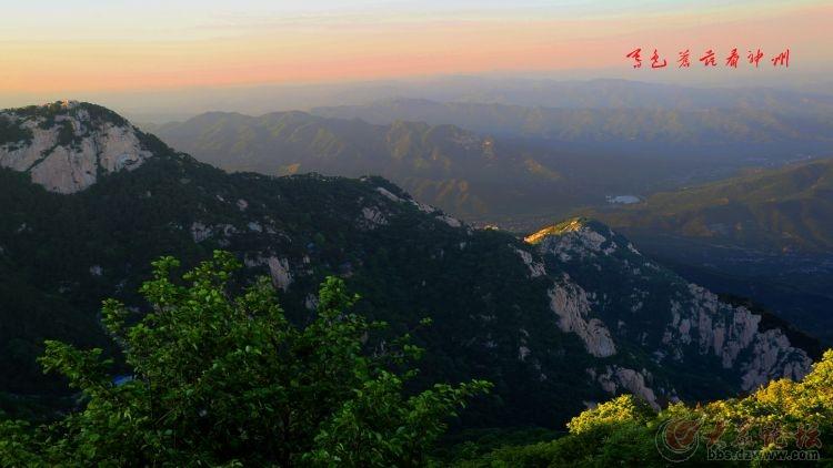 泰山顶上一青松