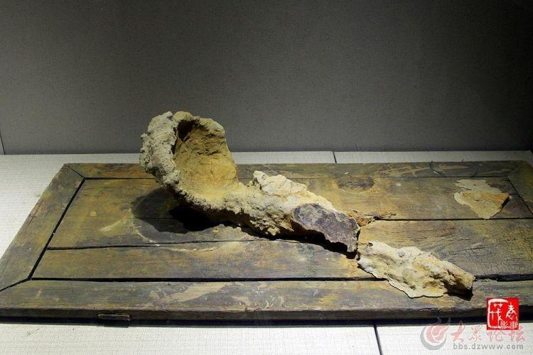 菏泽博物馆(1).jpg