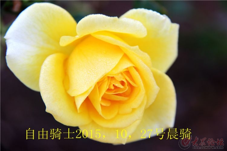 IMG_8739.jpg
