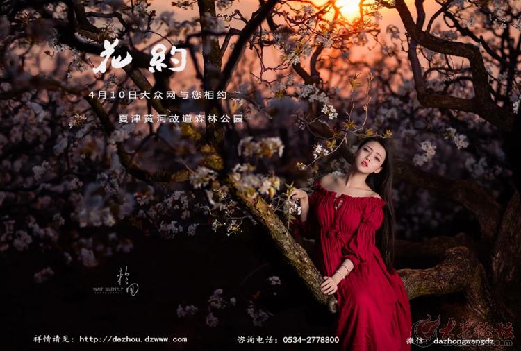 【第87期】拍客招募《花·约》夏津黄河故道森林公园采风
