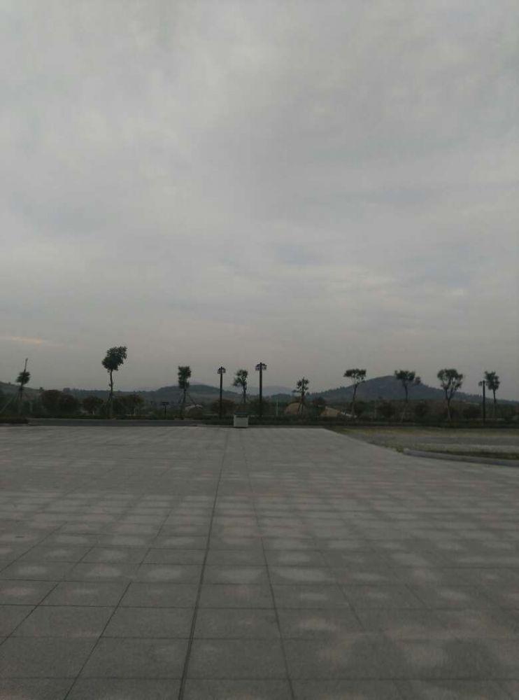 临沂临港经济开发区_临沂临港经济开发区被评为 中国宜居城镇
