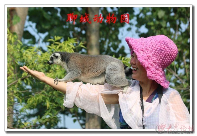 动物园16.jpg