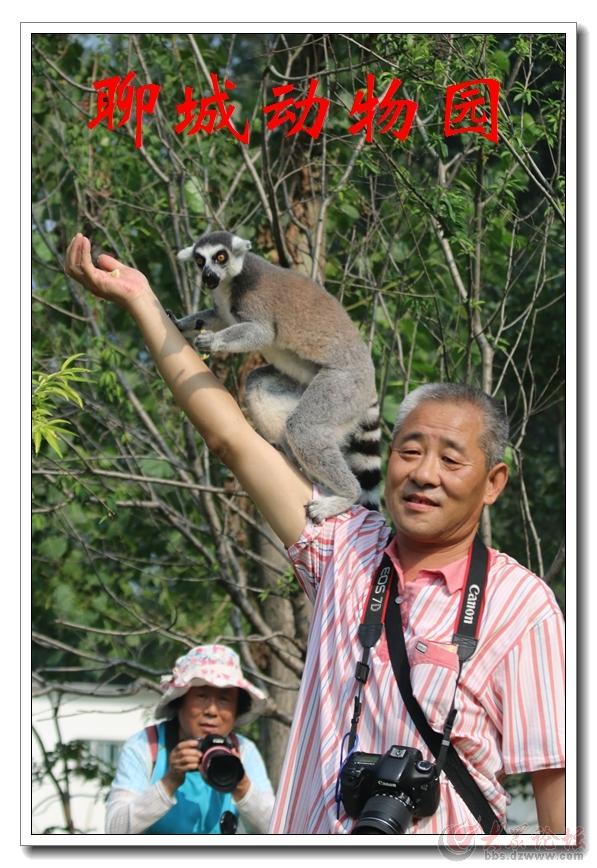 动物园15.jpg