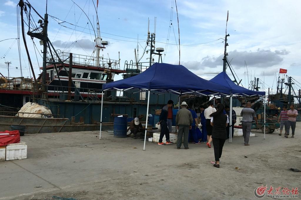 羊口渔港14.jpg