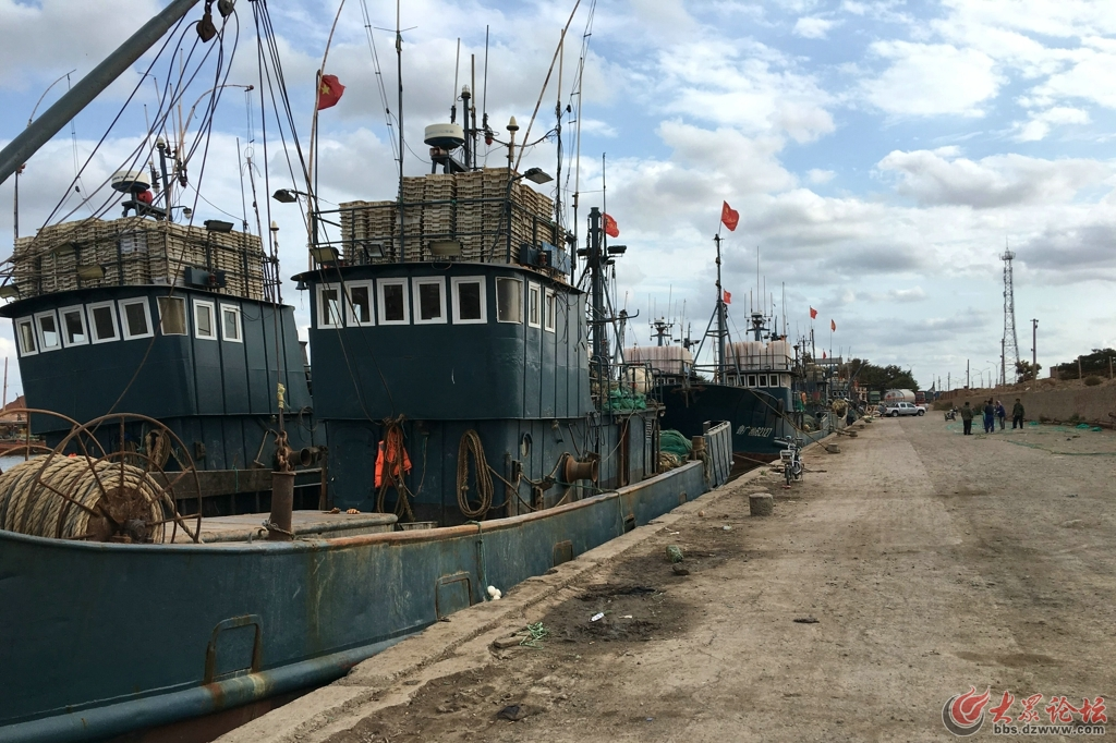 羊口渔港18.jpg
