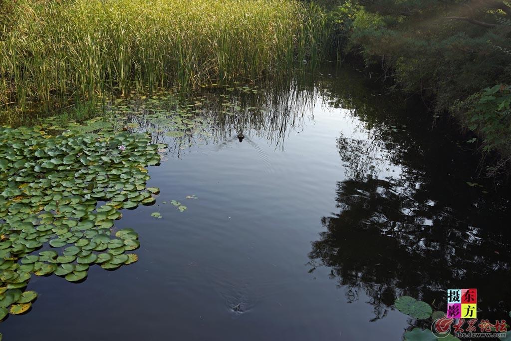 一山湖水公园9..jpg