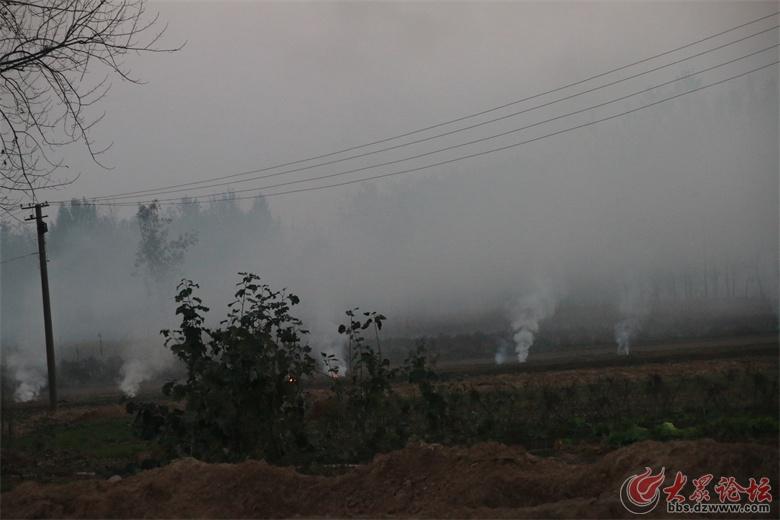 烟雾缭绕,对在省道上行驶的车辆也造成极大影响,视线很不好。