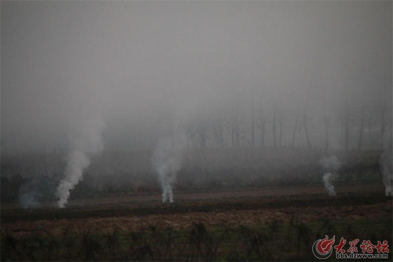 远一点,什么东西也看不见,都被烟雾遮住了!