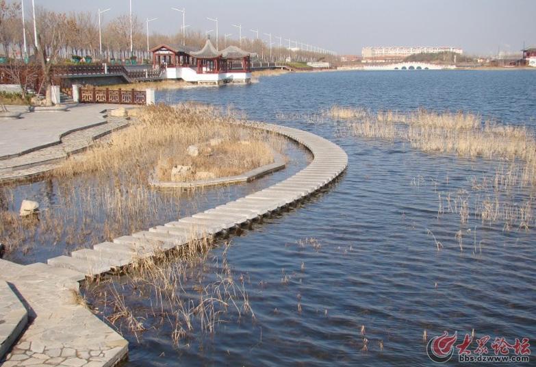 冬日的滨州北海公园