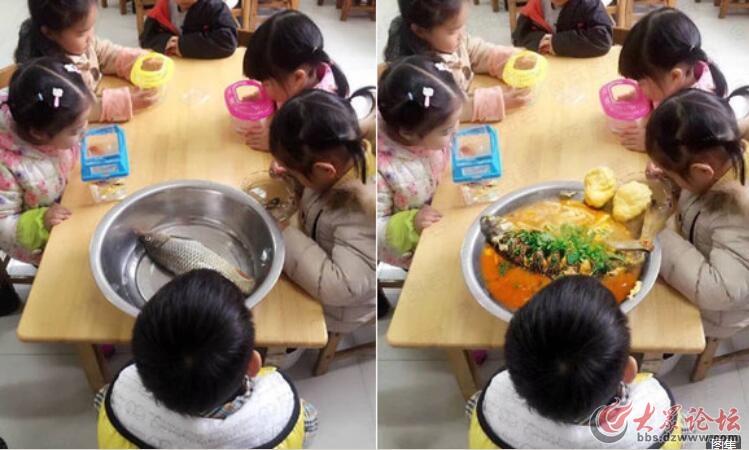 老师说带条小鱼来观察 耿直的家长给孩子用盆装来这个