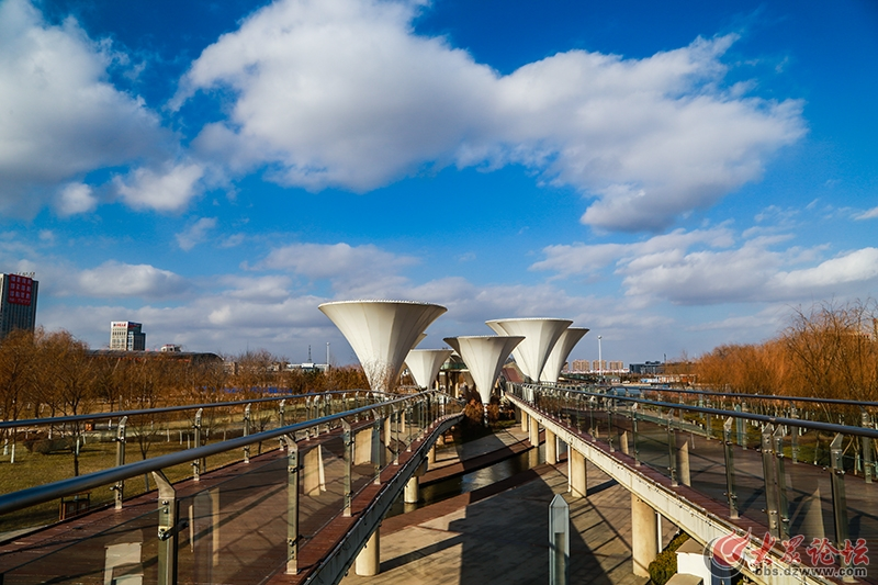 IMG_0028黄河公园.jpg