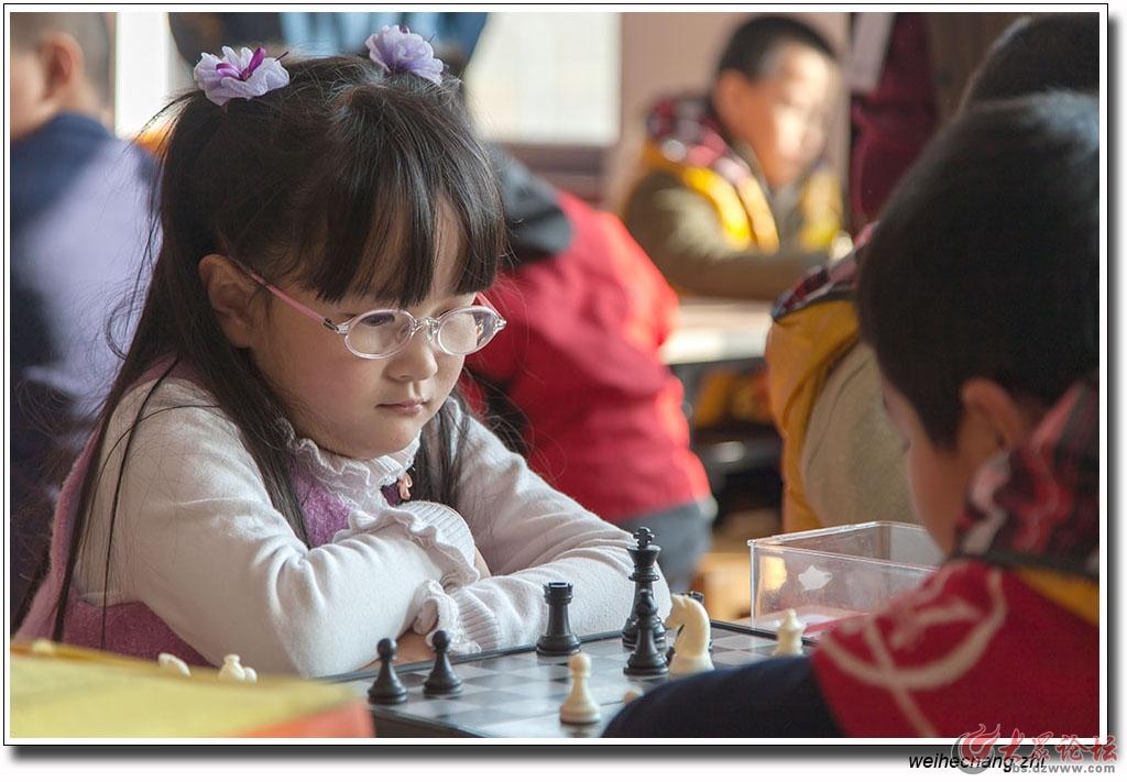 安丘少儿国际象棋比赛12.jpg