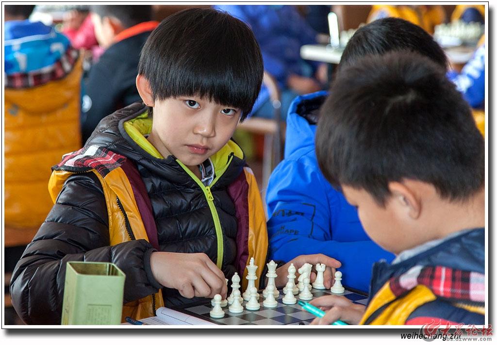 安丘少儿国际象棋比赛16.jpg