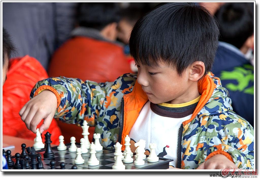 安丘少儿国际象棋比赛26.jpg