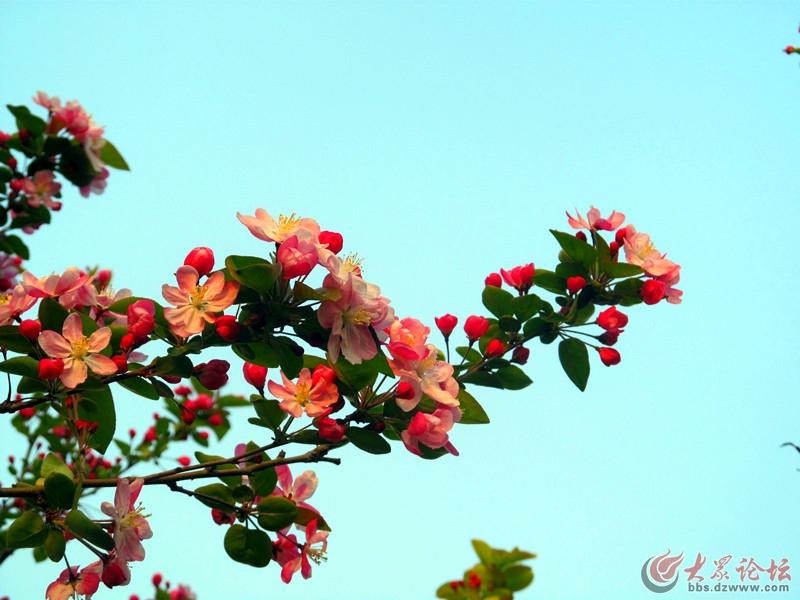 IMG_1370_副本.jpg
