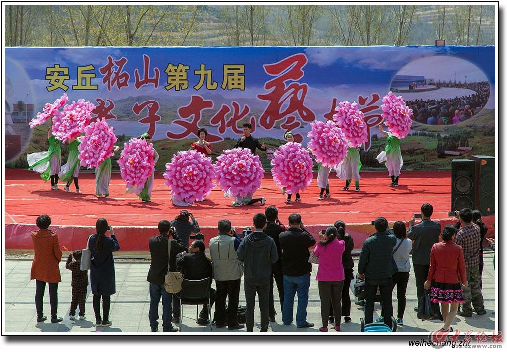 老子文化艺术节28.jpg